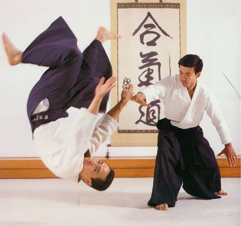 Japanese Budo on throwing another